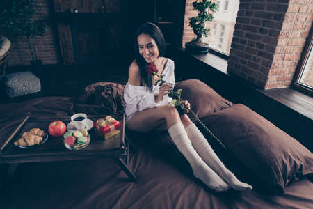 Portrait of her she nice attractive charming pretty cheerful cheery dreamy girl sitting on bed enjoying smelling fresh red rose at industrial brick wood loft modern interior style house