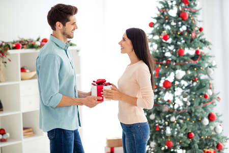 Profile side photo of two romantic people with brown hair celebrate christmas follow x-mas tradition hold gift in house with newyear decoration indoors