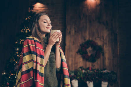 Profile side photo of positive cheerful girl covered checkered blanket hold mug smell aroma of eggnog enjoy rest relax on christmas vacation in house with x-mas lights illuminations decoration indoors
