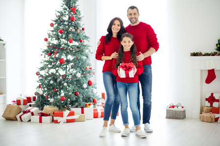 Full size photo of charming family of daddy mommy schoolgirl enjoy christmas time hold gift for x-mas in house with evergreen fir tree newyear decoration indoors