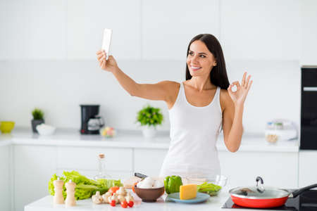 Portrait of positive house wife culinary blogger influencer make selfie video call show how she prepare healthcare supper approve her organic ingredients make okay sign in white house kitchen