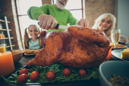 Cropped photo of big delicious roast meet green vegetables tomato retired pensioner man cut for thanksgiving october event meal small little kid sit table enjoy mature relative gathering in house