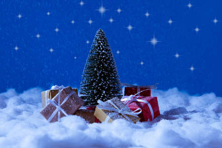 Christmas eve time celebration concept. Small fir tree having red brown gift box santa claus deliver x-mas midnight from north pole stand under blue night sky background 写真素材