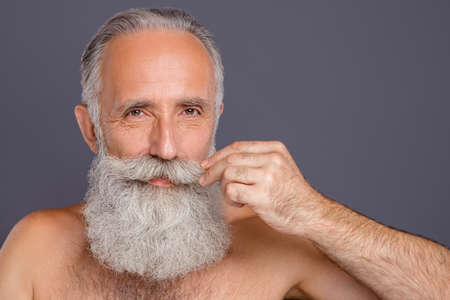 Close up photo of aged handsome man metrosexual touching amazing neat long beard after styling salon nice result shirtless isolated grey background