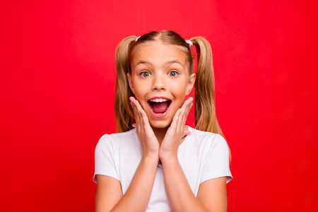 Closeup photo of beautiful little lady holding arms on cheekbones open mouth exciting mood newyear discounts wear white t-shirt isolated red vivid color background