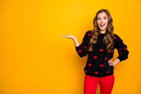 Photo of funky cheerful lady open mouth holding open palm product low season shopping prices wear hearts pattern pullover red trousers isolated yellow color background Banco de Imagens