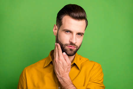 Close-up portrait of his he nice attractive content brutal virile serious bearded guy touching bristle isolated over bright vivid shine vibrant green color background