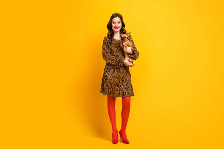 Full length body size view of her she nice attractive lovely charming cheerful cheery wavy-haired girl holding in hand small little dog isolated on bright vivid shine vibrant yellow color background