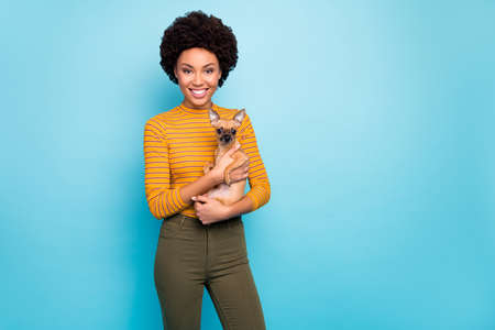 Photo of beautiful dark skin wavy lady hold favorite lovely little pet dog hands good mood best friends forever wear yellow striped jumper green pants isolated blue color background