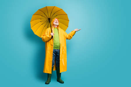 Full length body size view of his he nice dreamy cheerful cheery grey-haired man wearing yellow topcoat expecting sun sunny day isolated over bright vivid shine vibrant blue color background