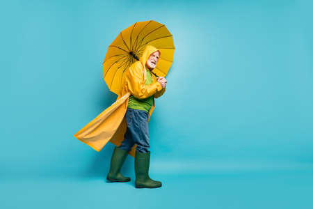 Full length body size profile side view of dissatisfied grey-haired man wearing yellow topcoat struggling bad weather going spending day isolated over bright vivid shine vibrant blue color background