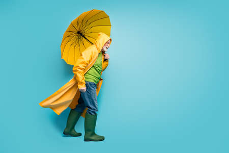 Full length body size profile side view of his he dissatisfied grey-haired man wearing yellow topcoat struggling windy bad weather isolated over bright vivid shine vibrant blue color background