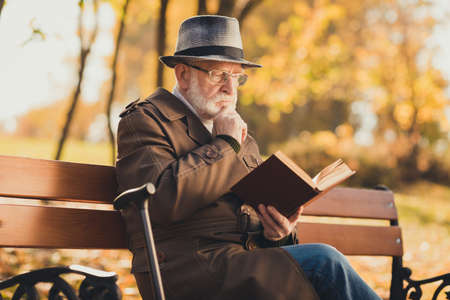 Profile side photo focused pensive old man sit bench with walk stick in autumn town colorful trees park read story book encyclopedia think environment information wear cap headwear