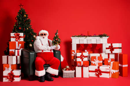 Portrait of his he attractive fat overweight amazed wondered stunned Santa sitting in armchair holding in hands small little evergreen tree isolated bright vivid shine vibrant red color background