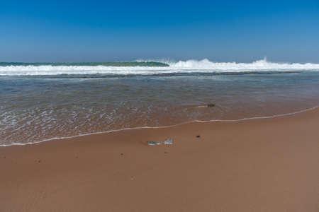 subtropical: Sheffield Beach
