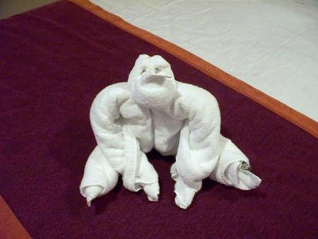 orange washcloth: Towel Gorilla