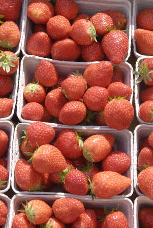 dean Pictures: K�BENHAVNCOPENHAGENDANMARK DENMARK. New danish strawberry for sale at fruit shop May 5, 2009      (PHOTO BY FRANCIS DEAN  DEAN PICTURES) Stock Photo