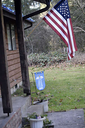 polictics: USAWASHINGTON STATE BONNEY LAKE_American still have hope during christmas celebration they host american flag and angle message with hope during christmas celebration though millions americans has lost hope find jobs and some are homeless and millions s