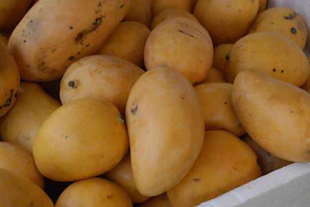 COPENHAGEN/DENMARK _ Mnagos fruit imported from Pakistan on sale 50dkr.per kilo at afgan food market 28 March 2012       Stock Photo - 12877564