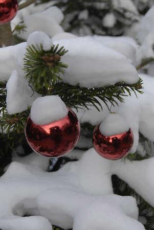 ediroial: Copenhagen   Denmark   Snow falls on christmas trees and Ornament  during cold snow falls weather 11 Dec  2012
