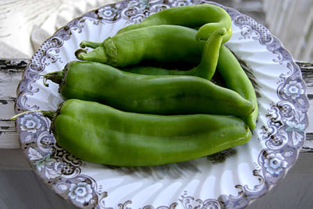 Green Chili peppers in plate.     Stock Photo
