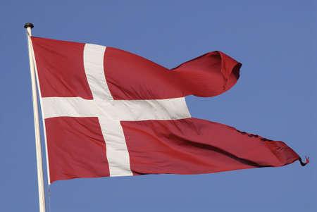 Copenhagen /Denmark-  16 November  2013   _danish flag or dannebrog flys          Stock Photo - 23840954