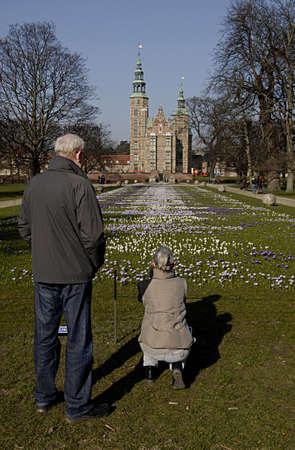 COPENHAGEN DENMARK- Danes and traveler enjoy first sunny spring day in konegsnhave coconet flowers like bed sheet at overlook Rosenborg castle         10  Marchi 2014
