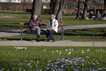 COPENHAGEN DENMARK- Female senior citizens enjoying sunnsy march spring in kongenshave and smell spring flwoers         12  Marchi 2014