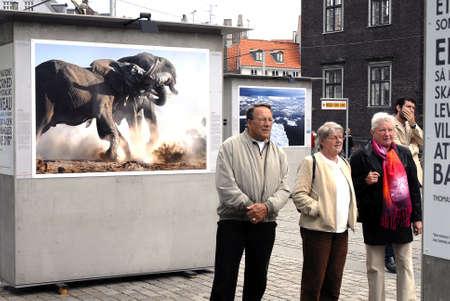 dean Pictures: Britisn wild  Photographer Steve Bloom Open air Photo Exhibtion in Copenhagen Denmark may 17,2006