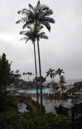 vacationers: Maui .Hawaii islands ,USA Rainy day on maui island          24 January 2015