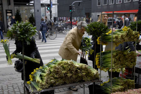 femal: .Copenhagen.Denamrk   _Femal flowers shoppers on flower shop               25 March 2015