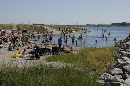 bather: CopenhagenDenmark 08 August  2015_ Sun bather on sunday at Amager beach