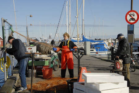 habour: DragorCopenhagenDenmark 11th October  2015_Satudays life at Drgaor fishing habour and first danish felame fisherwoman at dragor  habour Editorial