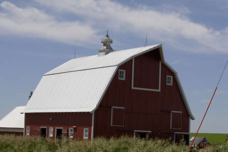 iowa agriculture: PLYMOUTH COUNTY IOWA USA- Former life animals cattles and barns and agriculture and former country life         13 JUNE  2014