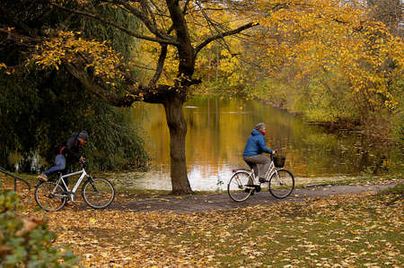 autumn colour: Copenhagen  Denmark_ 07th. November 2016 _   Trees and leaves with autumn and falls colour in Churchill park and Kastellet   .