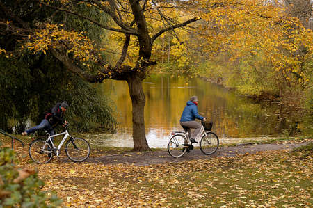 autumn colour: Copenhagen  Denmark,07th. November 2016:   Trees and leaves with autumn and falls colour in Churchill park and Kastellet