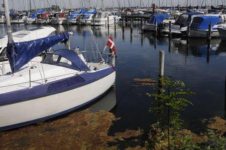 kastrup: kastrupCopenhagen Denmark - 28. May 2017. _Kastrup marina . Editorial