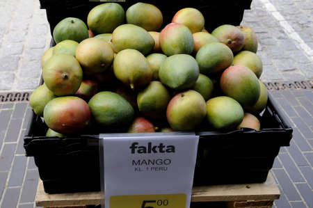 fakta: kastrupCopenhagen Denmark - 02 June  2017. Mango fruit impirted from Peru in fakta food market . Editorial