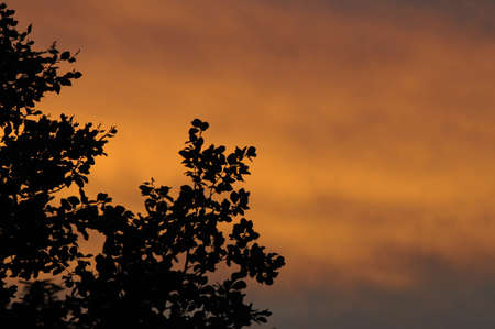 Sun rise over Kastrup . Stock Photo
