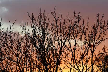 KastrupCopenhagen Denmark - 29..October  2017.  Sunsets over Kastrup,Copenhagen. Stock Photo