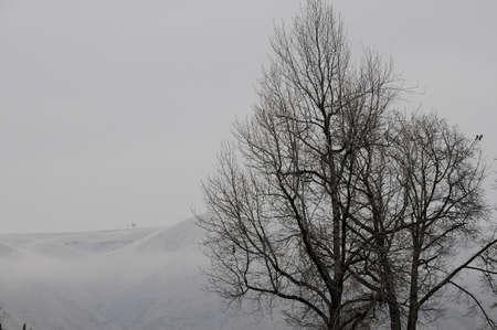 LEWISTON  IDAHO ( USA  04.January 2018 _Lewiston hills covered with some fog.