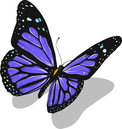 illustration of a beautiful colorful butterfly that flies