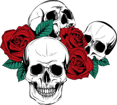 A skull with roses on white background