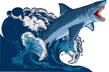 Lo squalo salta con la bocca aperta nel mare. Isolamento dello squalo su uno sfondo bianco. Illustrazione vettoriale piatto Vettoriali