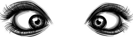 Beautiful Women Eyes with make up Vettoriali