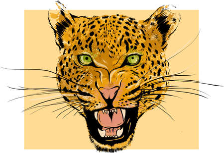 Leopard Portrait. Angry wild big cat head. Cute face of African Aggressive predator with bared teeth in cartoon style