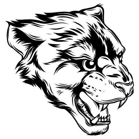 Cougar Panther Mascot Head Vector Graphic illustration Vectores
