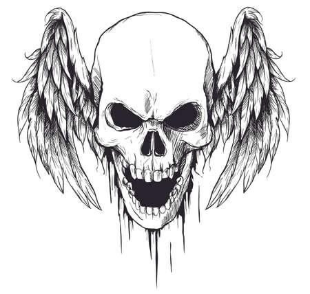 Skull with Wings Vector Illustration Ilustração