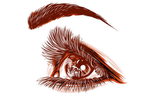 eyes of women vector illustration Banque d'images - 124695827