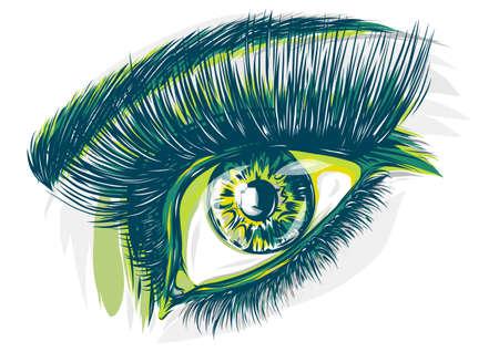 eyes of women vector illustration